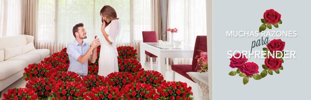Arreglos florales envio de flores