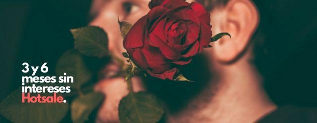 rosas 3 y 6 meses sin intereses