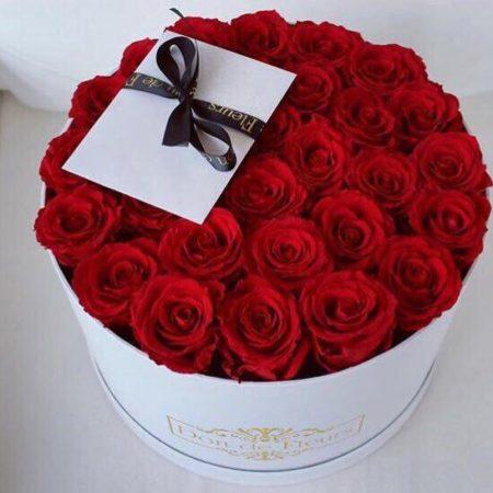 Caja con 25 rosas Rojas