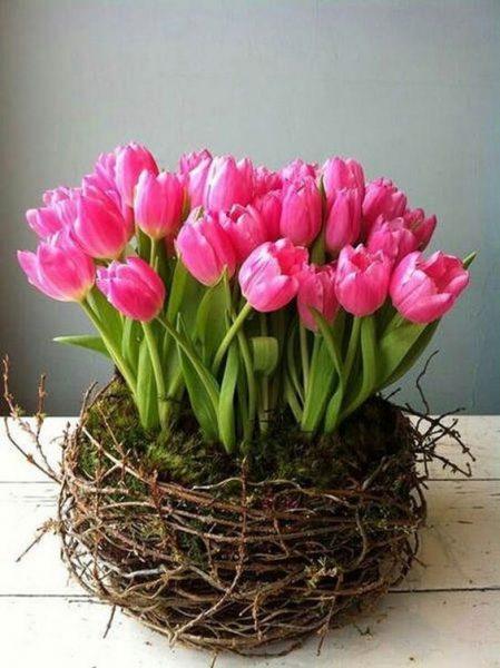 Envía Flores Cuernavaca